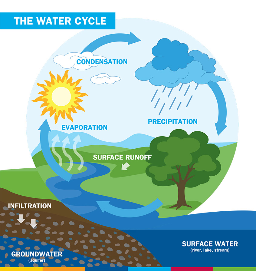 AMWaterCycle