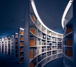 Biblioteca curva
