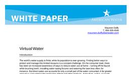 WP_Virtual_Water_White_Paper_FINAL_3.18.11.pdf