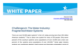 WP_Challenges_In_The_Water_Industry_Fragmented_Water_Systems041608.pdf