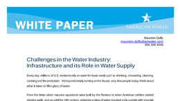 WP_Challenges_In_The_Water_Industry_Infrastructure041608.pdf