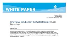 WP_Leak_Detection_White_Paper_FINAL_3.24.10.pdf